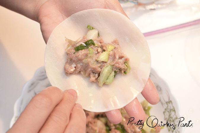 homemade gyoza 6